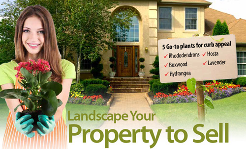 Easy Landscape tips to sell your andover ma home