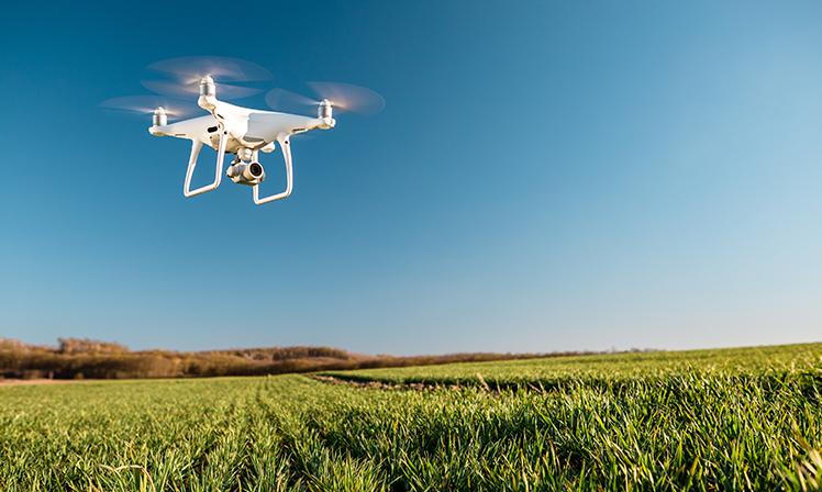 Drones auxiliam o agronegócio