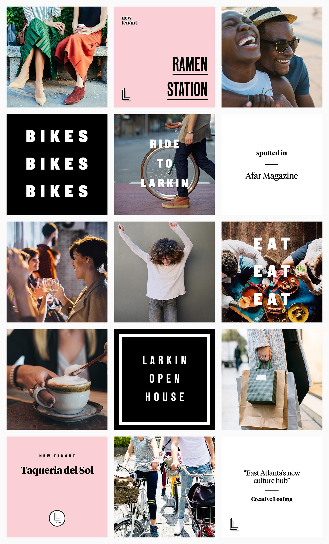 tforrester_Larkin_social_grid
