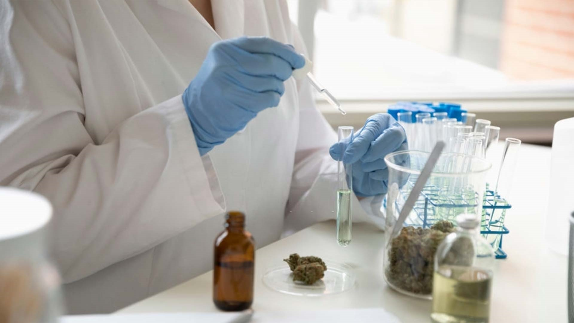 Medical Cannabis May Help HIV patients