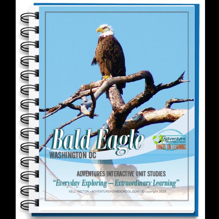 Edventure Kid Unit Study Bald Eagle