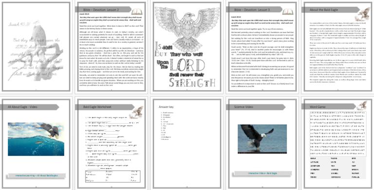 Edventure Unit Study Bald Eagle