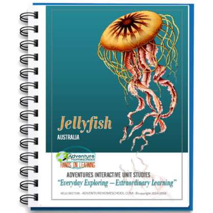 Jellyfish Unit Study
