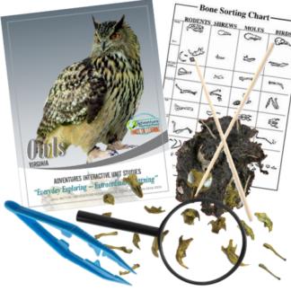 Owl Pellet Kit