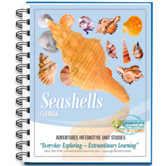 Seashells Unit Study