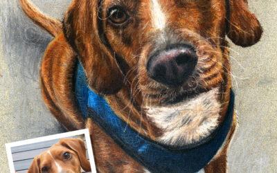 Custom Painted Pastel Pet Portrait of Chocolate Lab Dog