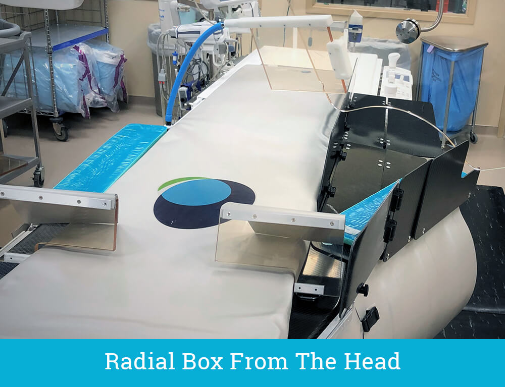 The EGGNEST - Radial Box From The Head