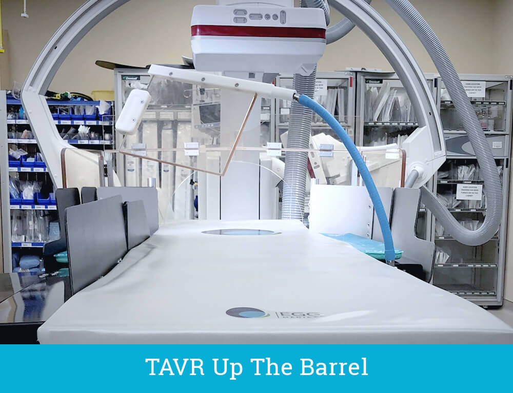 TAVR Shield