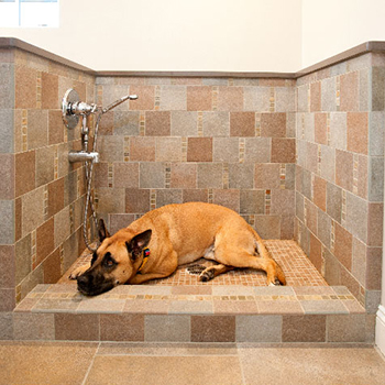 Cobblestone Dog Bath