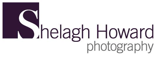 sh_website_logo