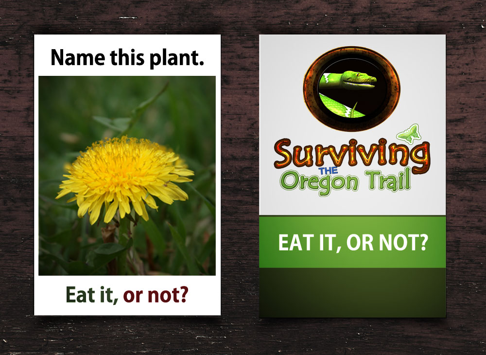 custom flash card survival wild edibles