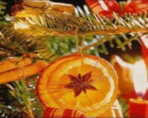 Orange Slices Ornaments