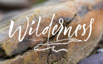 Letting Go in the Wilderness – John 3:1-17