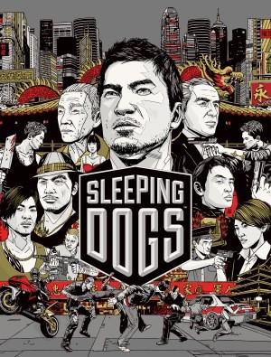 Sleeping Dogs Box
