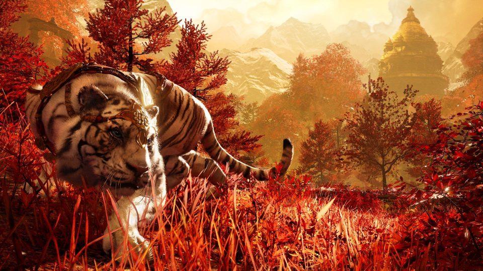Tiger bro