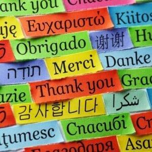 ENL/ Foreign Languages
