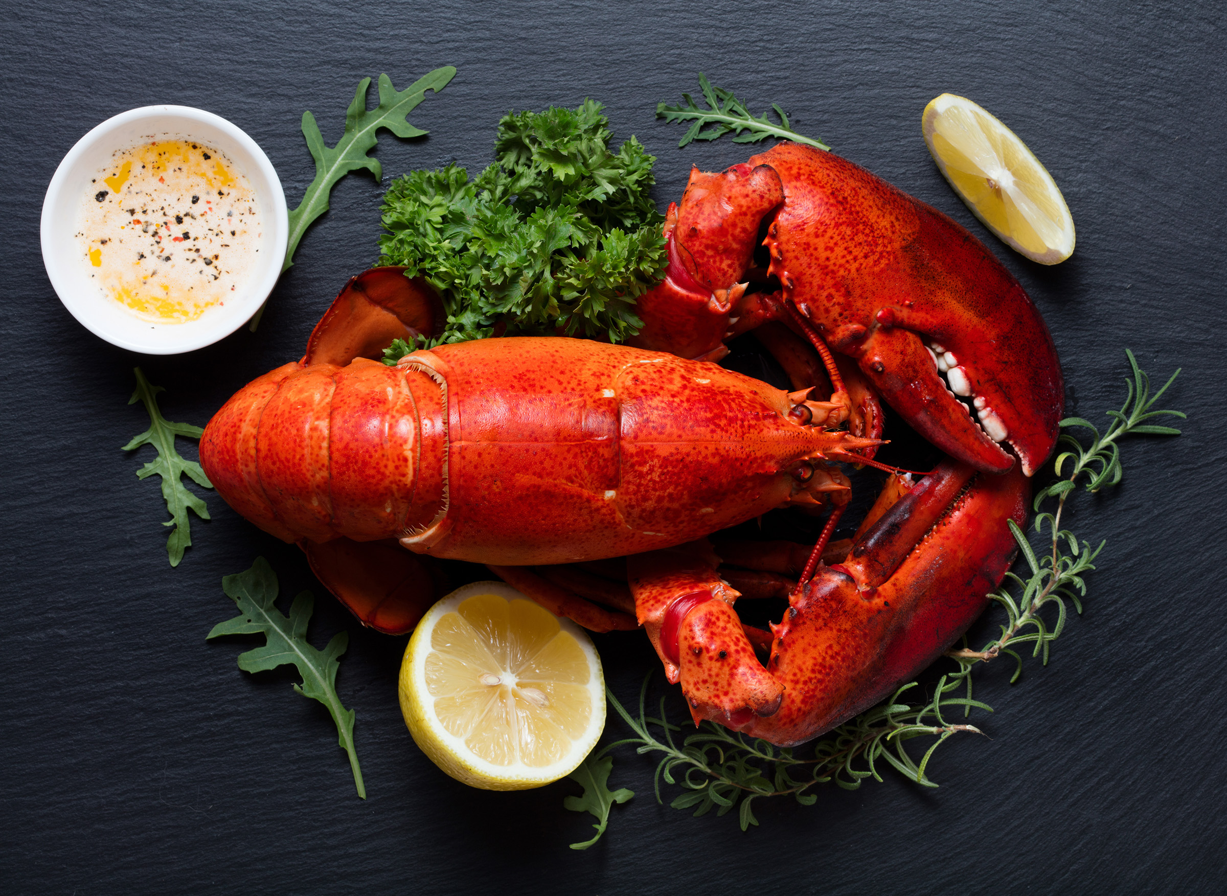 Bar Harbor Seafood retail whole cooked lobster