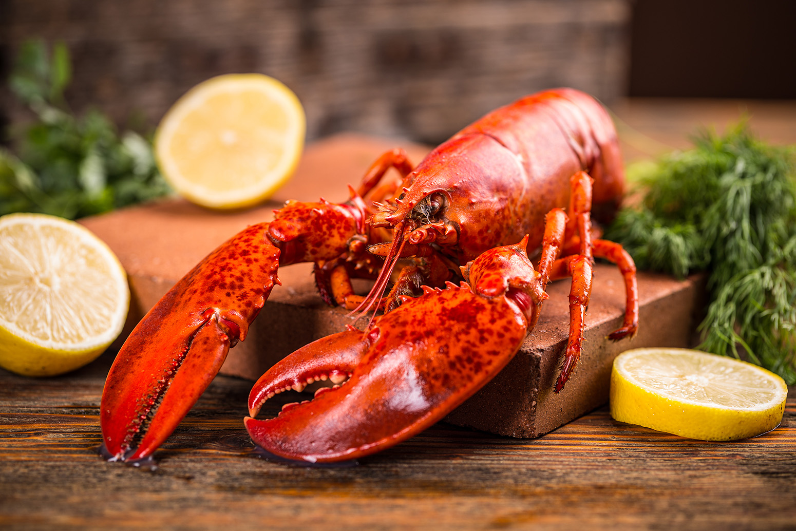 Bar Harbor Seafood whole cooked lobster
