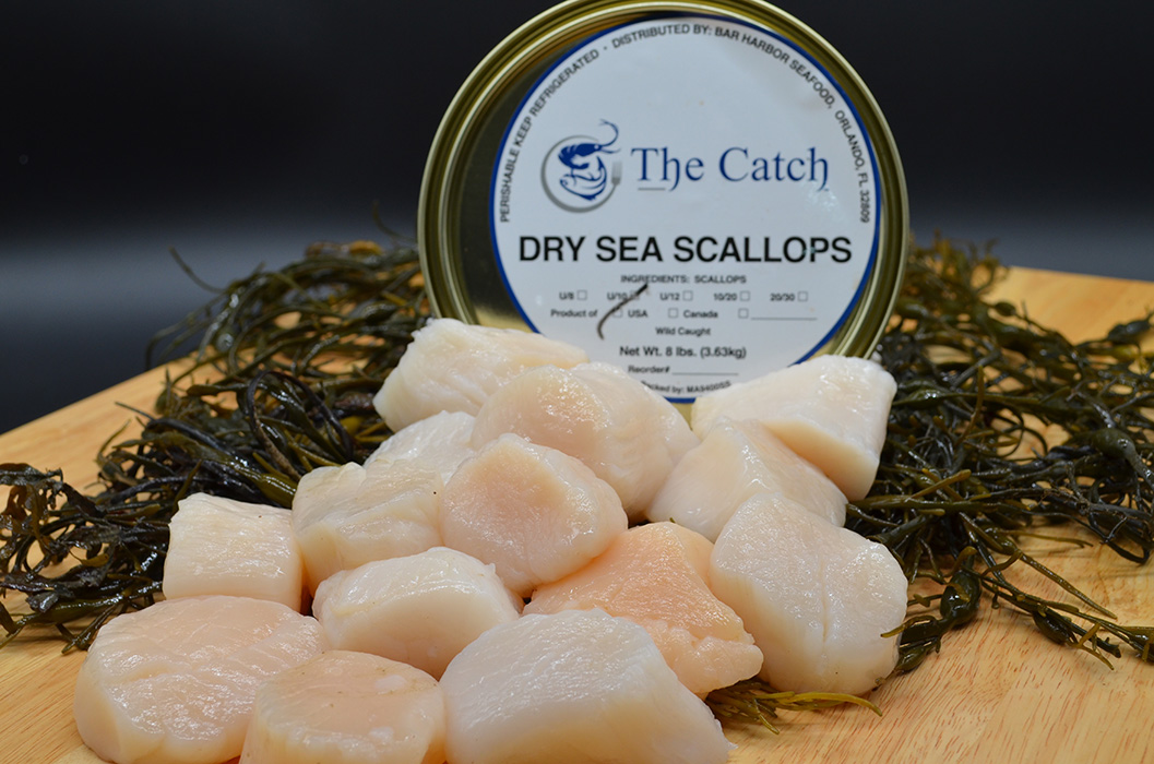 Bar Harbor Seafood fresh scallops