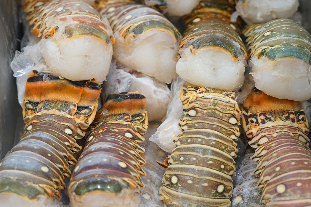 Bar Harbor Seafood raw frozen lobster tail for sale
