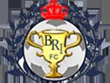 BRIFC Logo