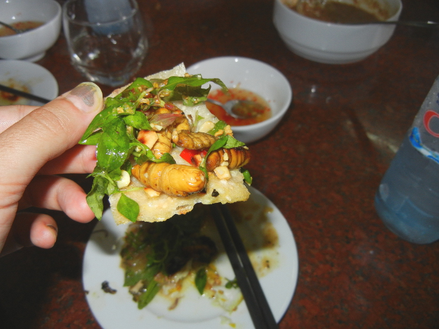 hoi-an-cooking-worms