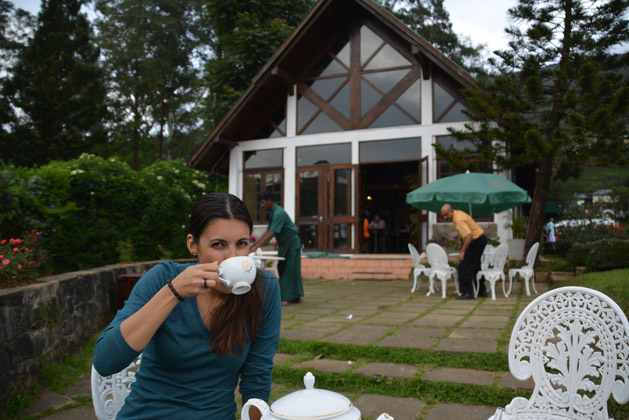 tea-srilanka-alissa