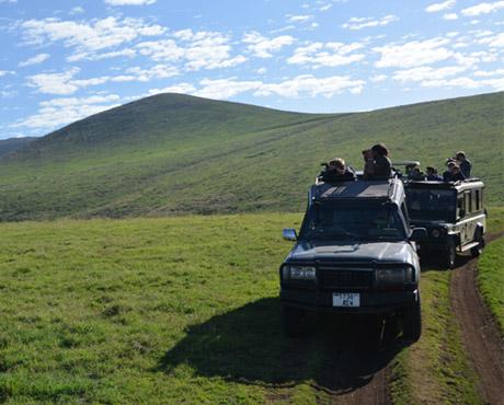 serengeti-trucks