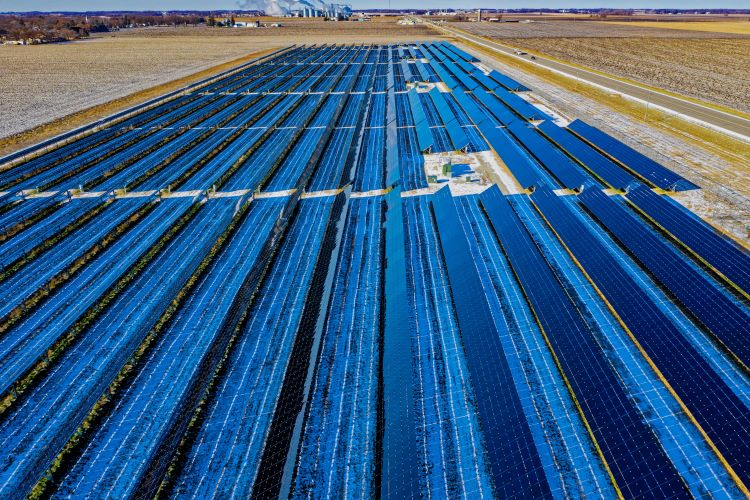 Photo of solar panel farm