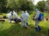 Man, 86, and woman, 70, are the latest victims of coronavirus