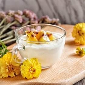 coagulated yogurt