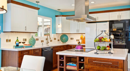 Lively Contemporary Kitchen