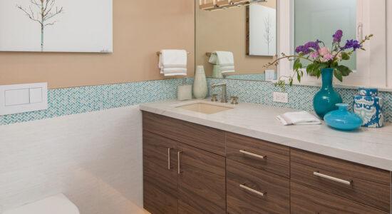Guest Bathroom San Diego