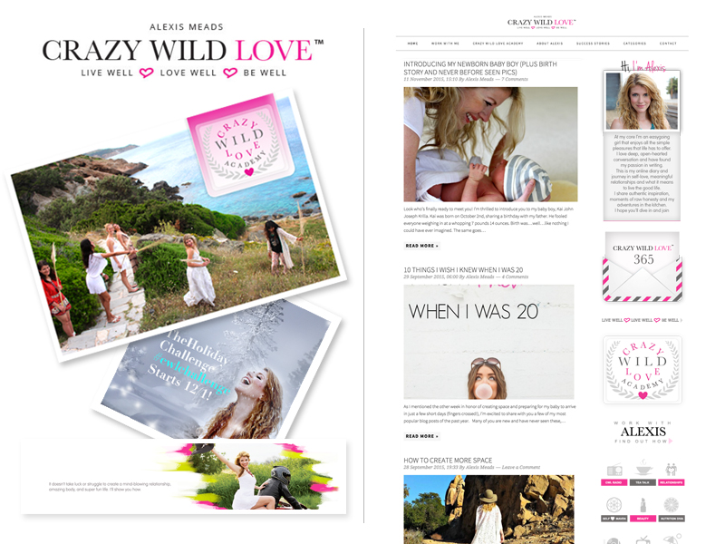 Crazy Wild Love by Alexis Meads