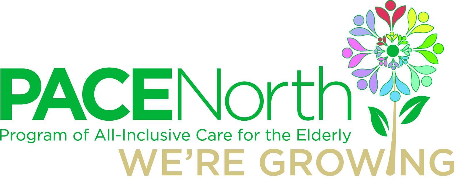 Read more about the article PACE North
