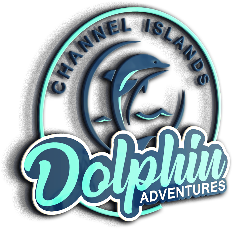 Channel Islands Dolphin Adventures