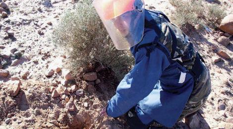 Algeria Declares Itself Mine-Free