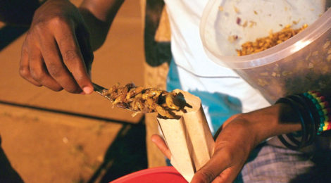 Uganda's Grasshopper Delicacy on the Decline