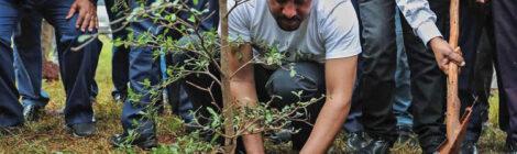 أثيوبيا تحقق رقما قياسياً عالمياً عن طريق زراعة 353 مليون شجرة في يوم واحد