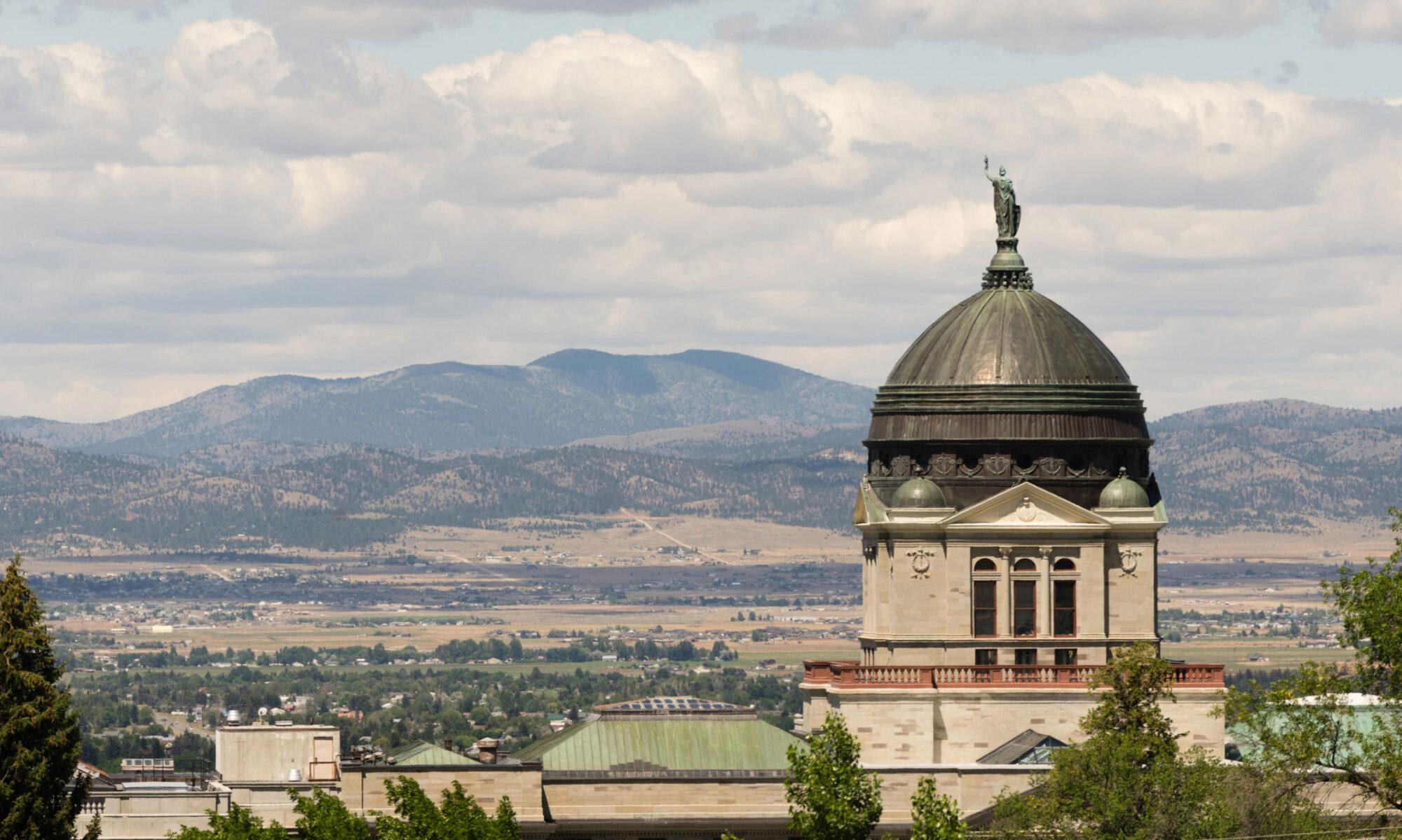 Montana Society of Association Executives