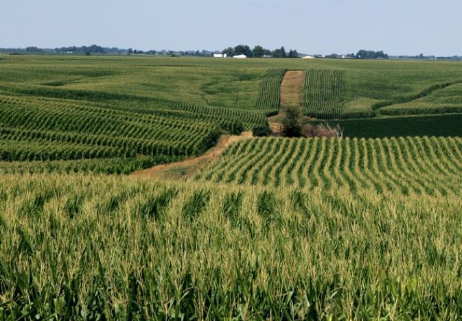 Valuing Ag Land in Nebraska