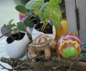 easter eggs and gardening