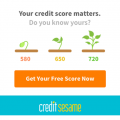 Free Credit Monitoring Credit Sesame