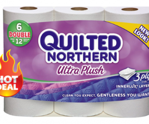 1 Publix Deal - Quilted Northern Ultra Plush 6 Dbl