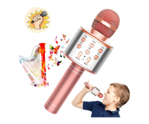 Karaoke Microphone with Voice Disguise Feature