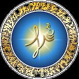 Nicole Thibodeau Logo