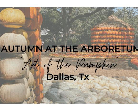 Autumn at the Arboretum- Dallas, Texas 2020