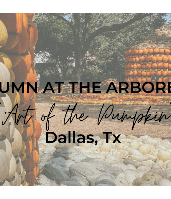 Autumn at the Arboretum- Dallas, Texas 2020