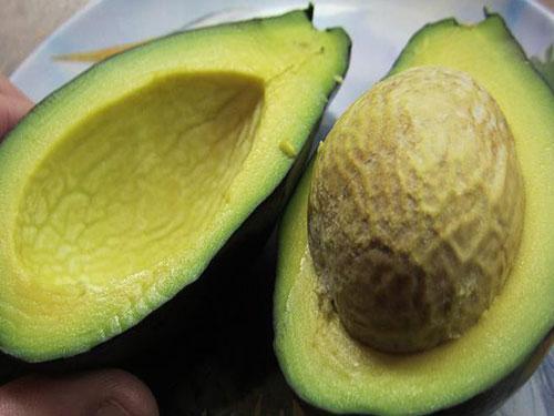 Brogdon Avocado