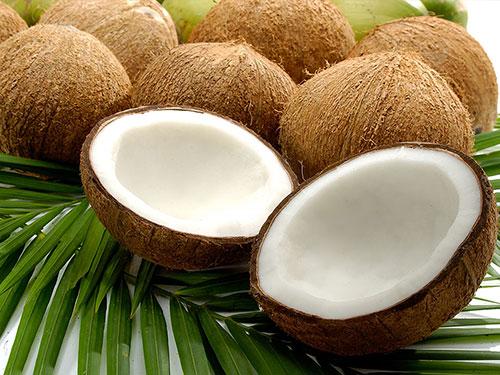 Coconut's